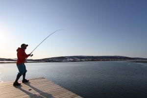 fiske med stang